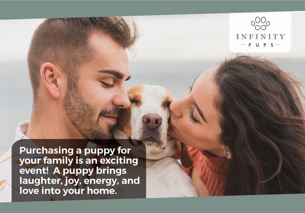 purchasingapuppyforyourfamily