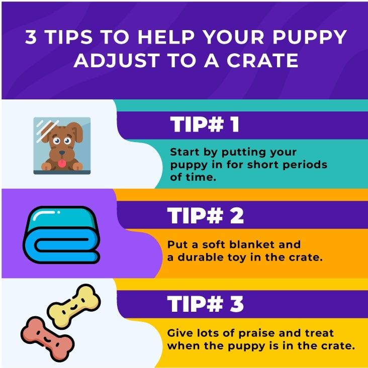 3 tips to crate
