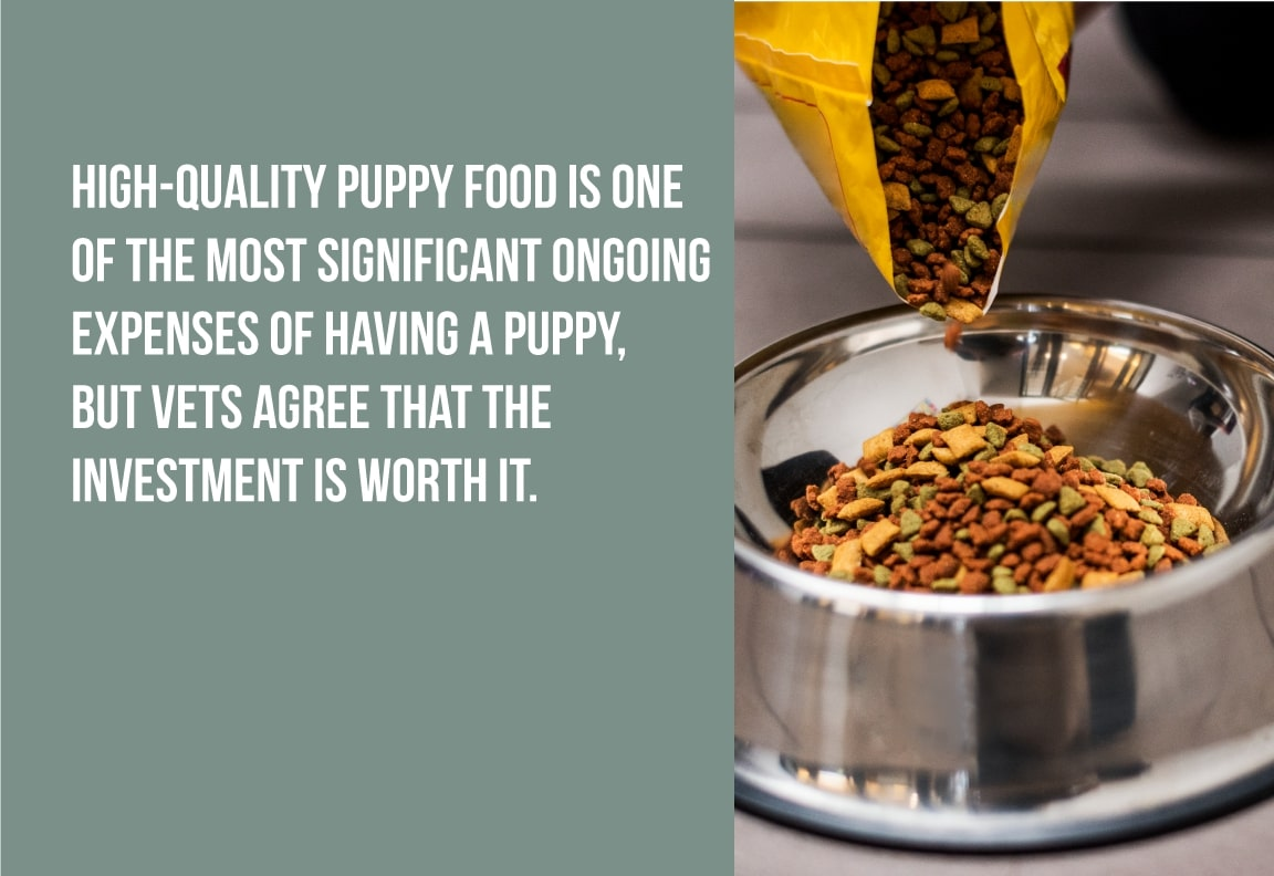 high quality puppy food is one