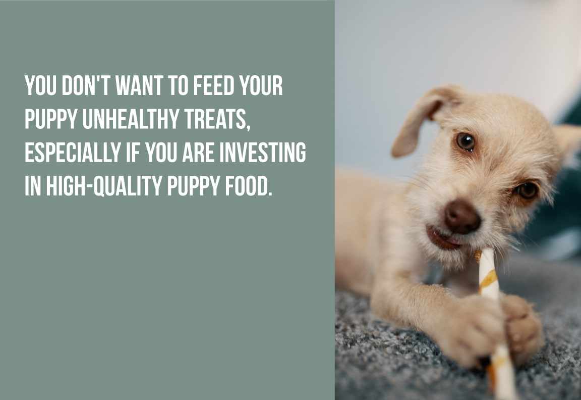 you don't want to feed your puppy unhealthy treats