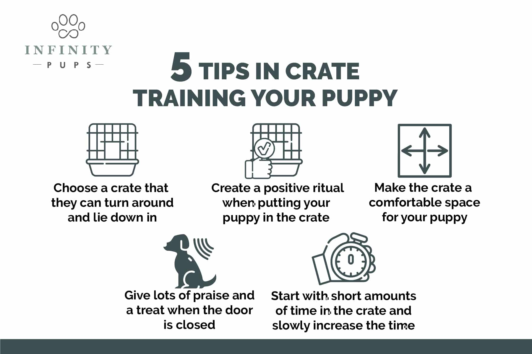5 tips to crate training your puppy