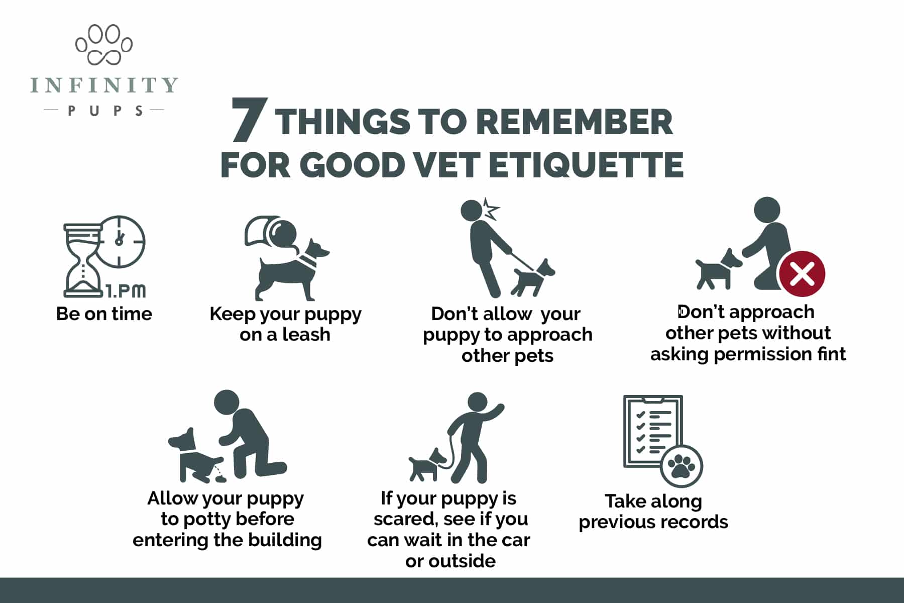7 things for good vet etiquette